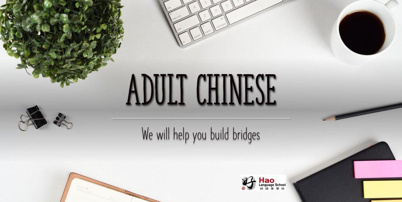Adult Programmes